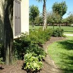 Landscape Design and supply garden center Services